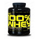 100% Whey Professional Protein od Best Nutrition 1000 g